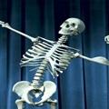 culturista-en-huesos-784612-700×350