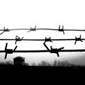 edu-cárcel-700×350