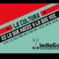 indiebo1-750×350