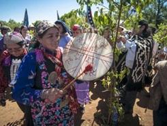 indigenas mapuches argentinos