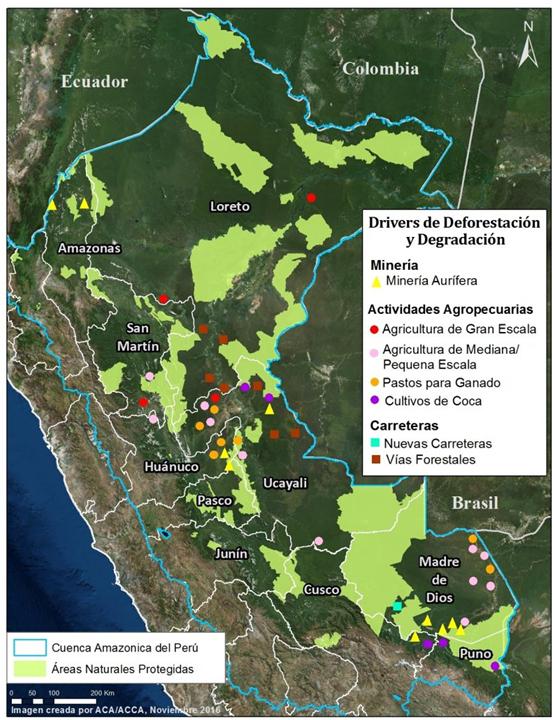 peru deforestacion