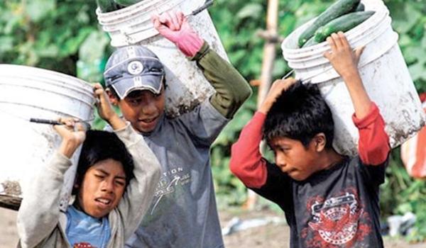 trabajo-infantil-en-mxico-disminuye-de-2009-a-2011-inegi-NHCVL133210