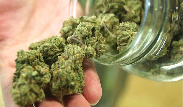 legalisierung-cannabis