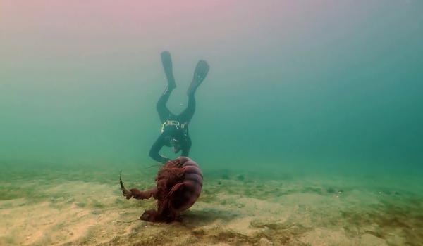 Misterios Submarinos 1 (1)