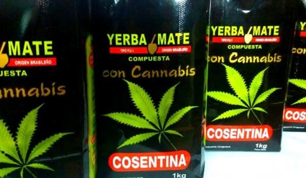 cannabis-mate