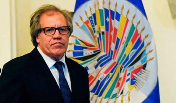 Luis-Almagro-Secretario-General-de-la-OEA
