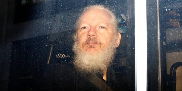 AssangeFlashe