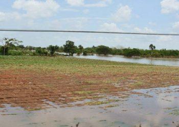 Inundaciones por intensas lluvias causaron la pérdida de cientos de hectáreas de cultivos en el 2018 / Vanguardia – Ramón Barreras