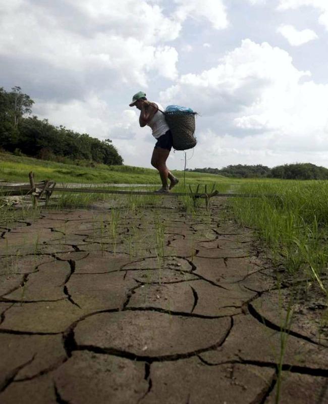 cambio climatico en américa latina